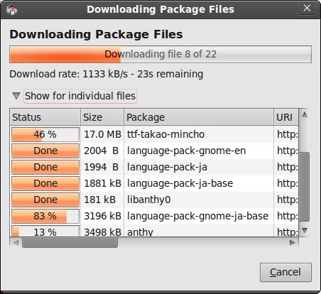Screenshot-Downloading Package Files